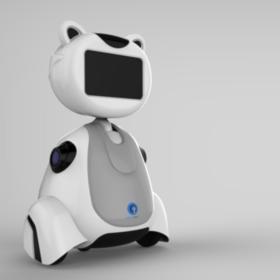 Cusbo butler robotics