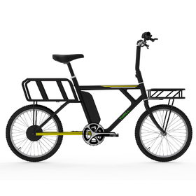 Electric city bike with storage