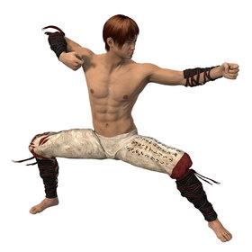 Martial artist miniature